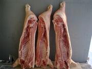 Мясо свинина УрФО